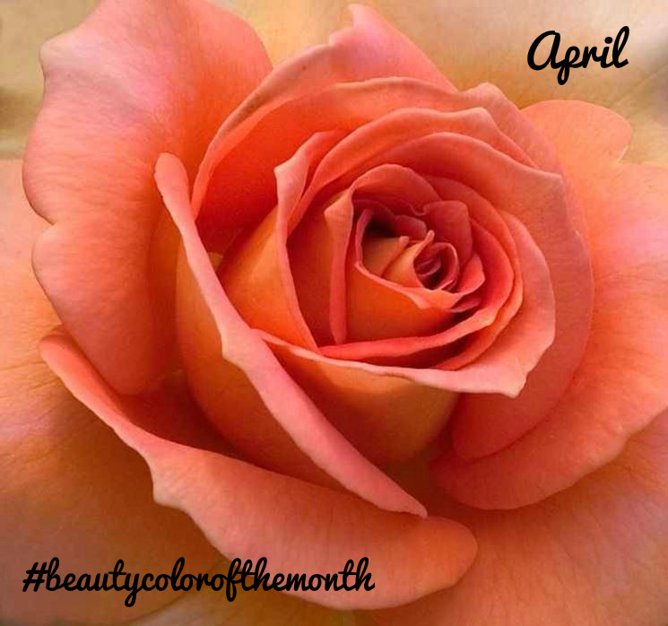 #beautycolorofthemonth