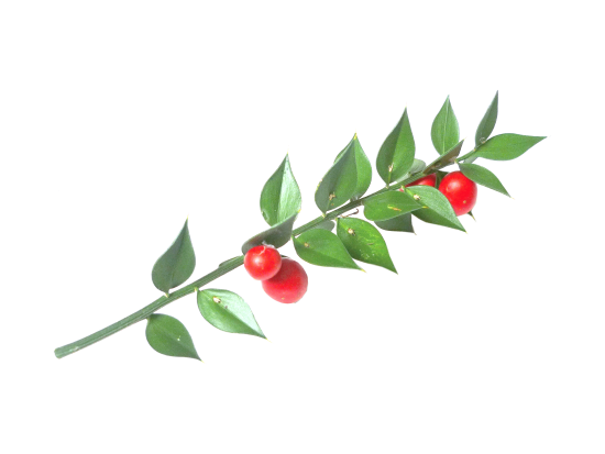 naturissima